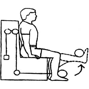 Exercises for Knee Arthritis - Fig. 4