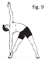 exercises for back pain  knee pain relief  yoga